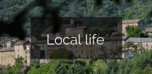 local-life-1